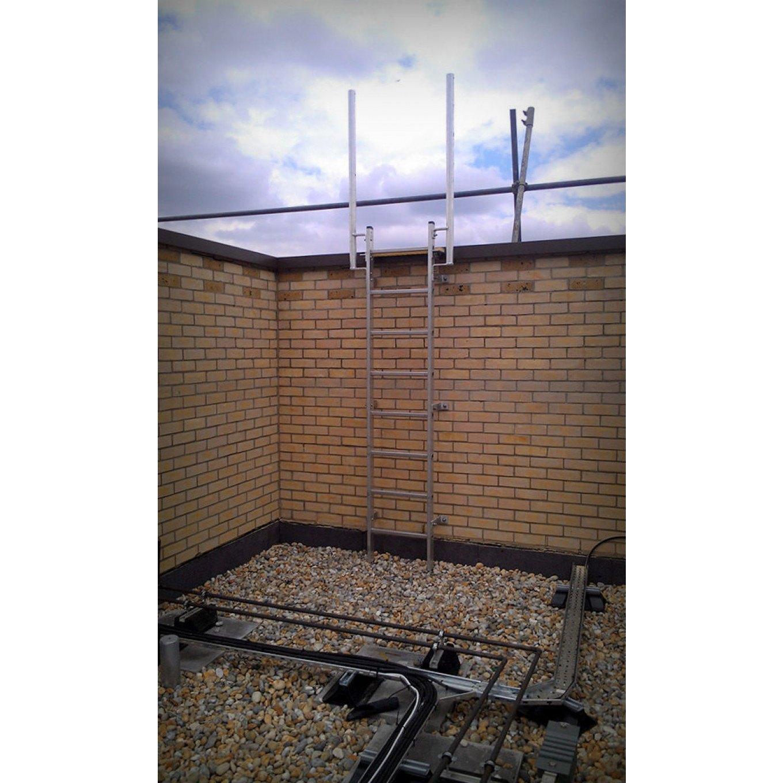 Fixed Vertical Ladder With Walkthrough