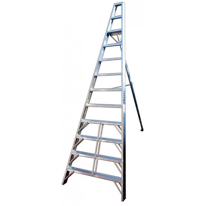 Fruit Picking Ladders