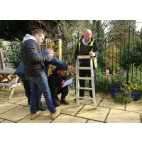 Stepladder Training