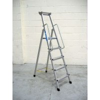 Z600 Anodised Step Ladders with Handrails