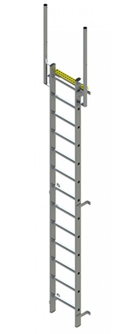 Fixed Vertical Ladder With Walkthrough